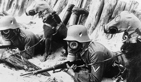 GermanGasMasks480
