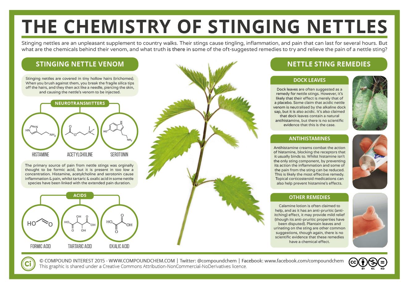 The-Chemistry-of-Stinging-Nettles
