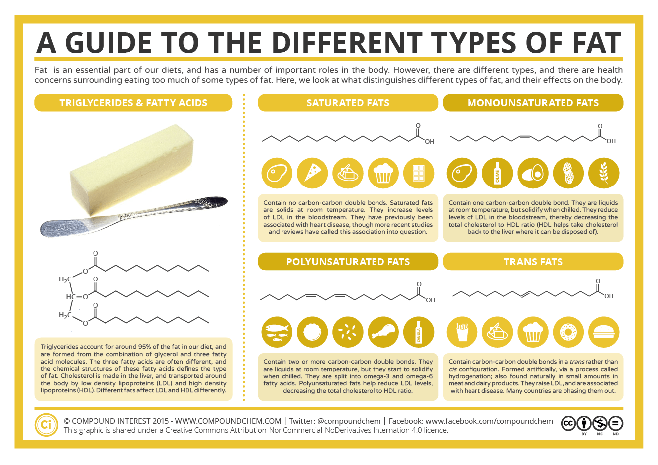 A-Guide-to-Different-Types-of-Fat