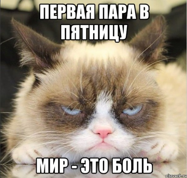grampi_34840028_orig_