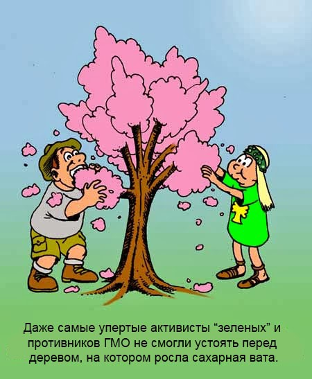 CottonCandyTree