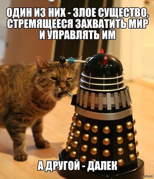 x8TSha-BQzk