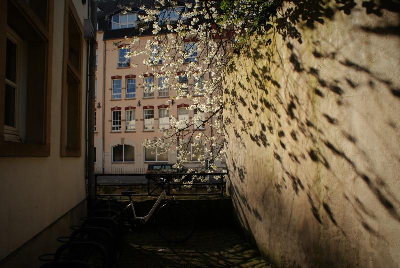 Люксембург. Старый город.