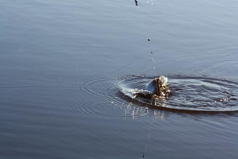 весенняя прикормка для белой рыбы