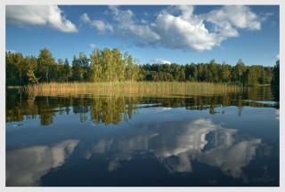 http://pics.livejournal.com/fedor_youshkov/pic/0002863z/s320x240