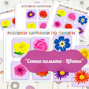 Igry_dlya_razvitiya_pamyati_i_vnimaniya_razvivayushchee_zanyatie_Setka_pamyati_Tsvety_7
