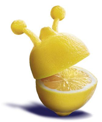 87000216_3720816_limon5