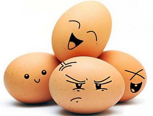 124-01-eggs-01