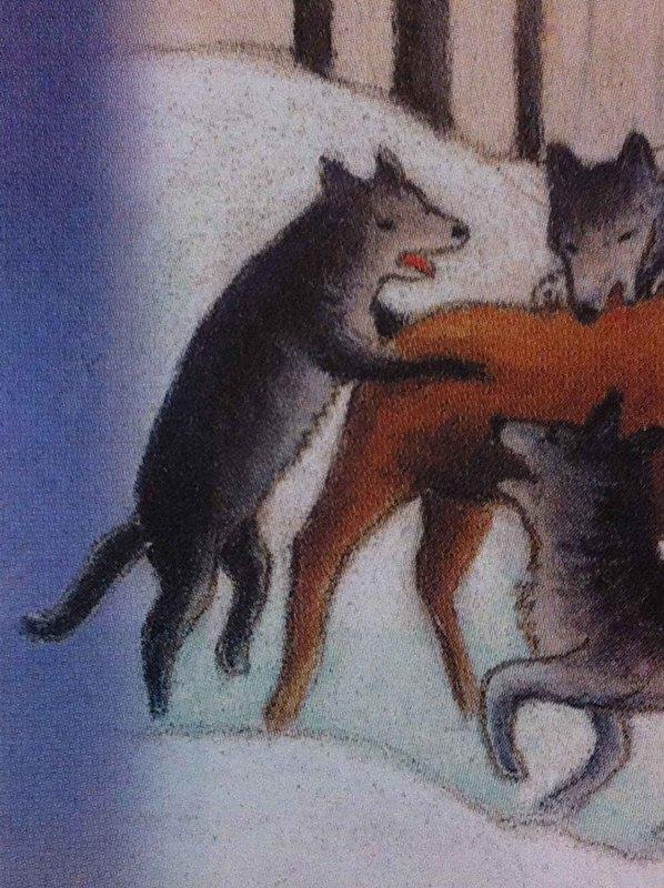 Волк и лиса занимаются сексом