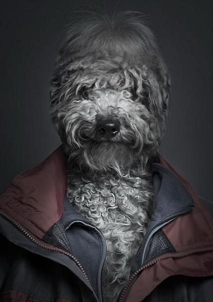 Sebastian-Magnani-UnderDogs-_1