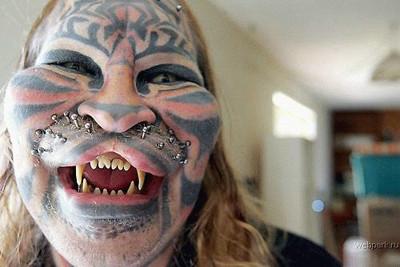 tigr-freak-2