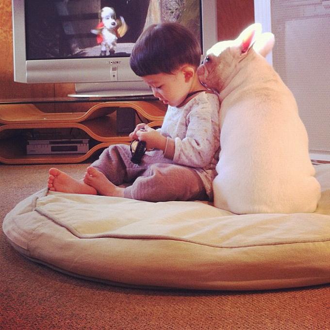 Лучшие друзья мальчик и его собака (11 фото) .