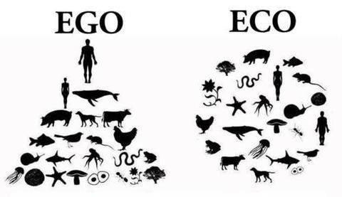 photo-day-ego-eco