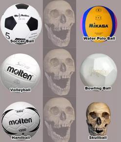 freak-japan-ball