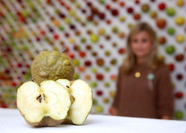яблоки1
