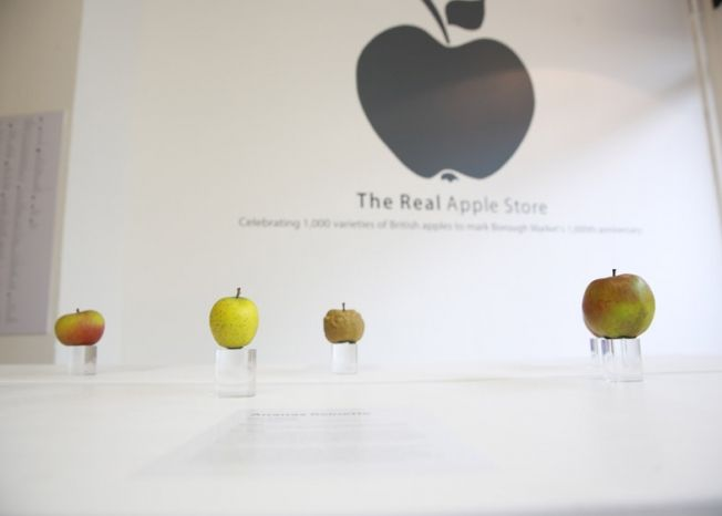 яблоки3