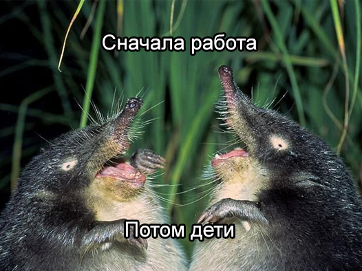 soveti-vihuhol-3