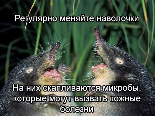 soveti-vihuhol-4