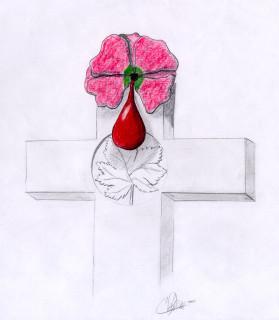 Remembrance - (c) Chris Pilgrim