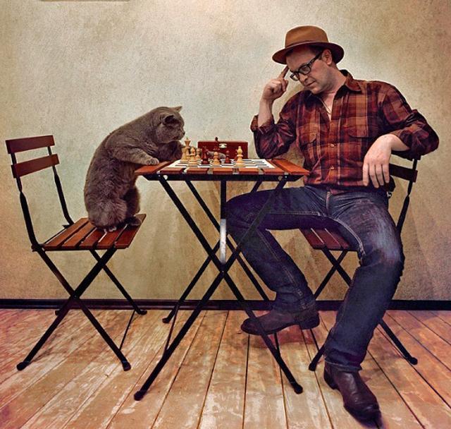 холостяк и кот