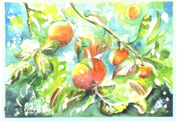 Рисунок (19)
