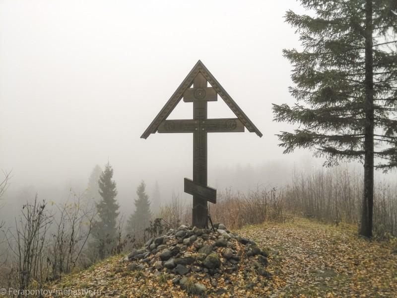 Фото. Цыпина гора, октябрь 2019