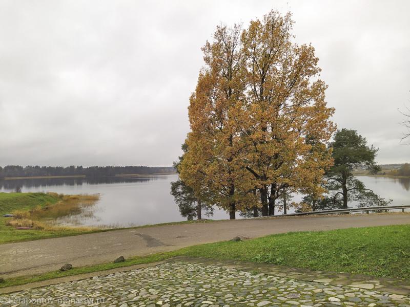 Вид на Монастырское озеро (Бородаевское) и остров патриарха Никона от Святых врат Ферапонтова монастыря.