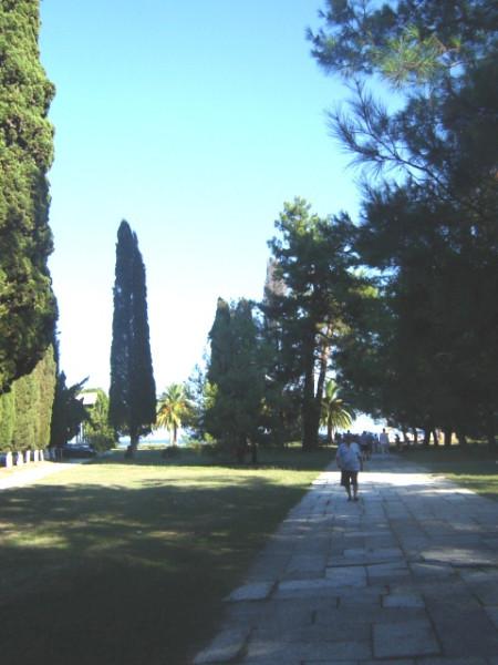 пицунда - парк запад1