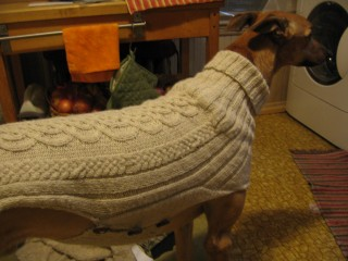 FO: Greyhound sweater: knitting