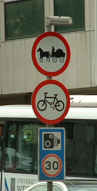 no-horse1