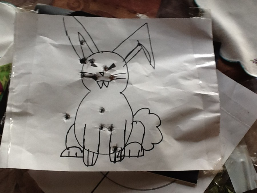 Target Bunny