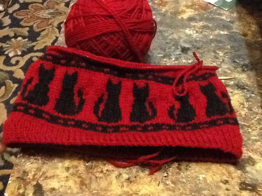 curiosity hat in progress
