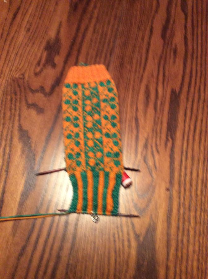 2016 Celeigh socks back