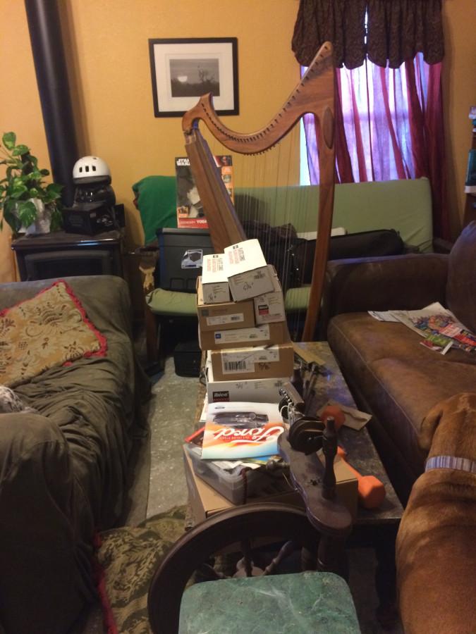 Living room full