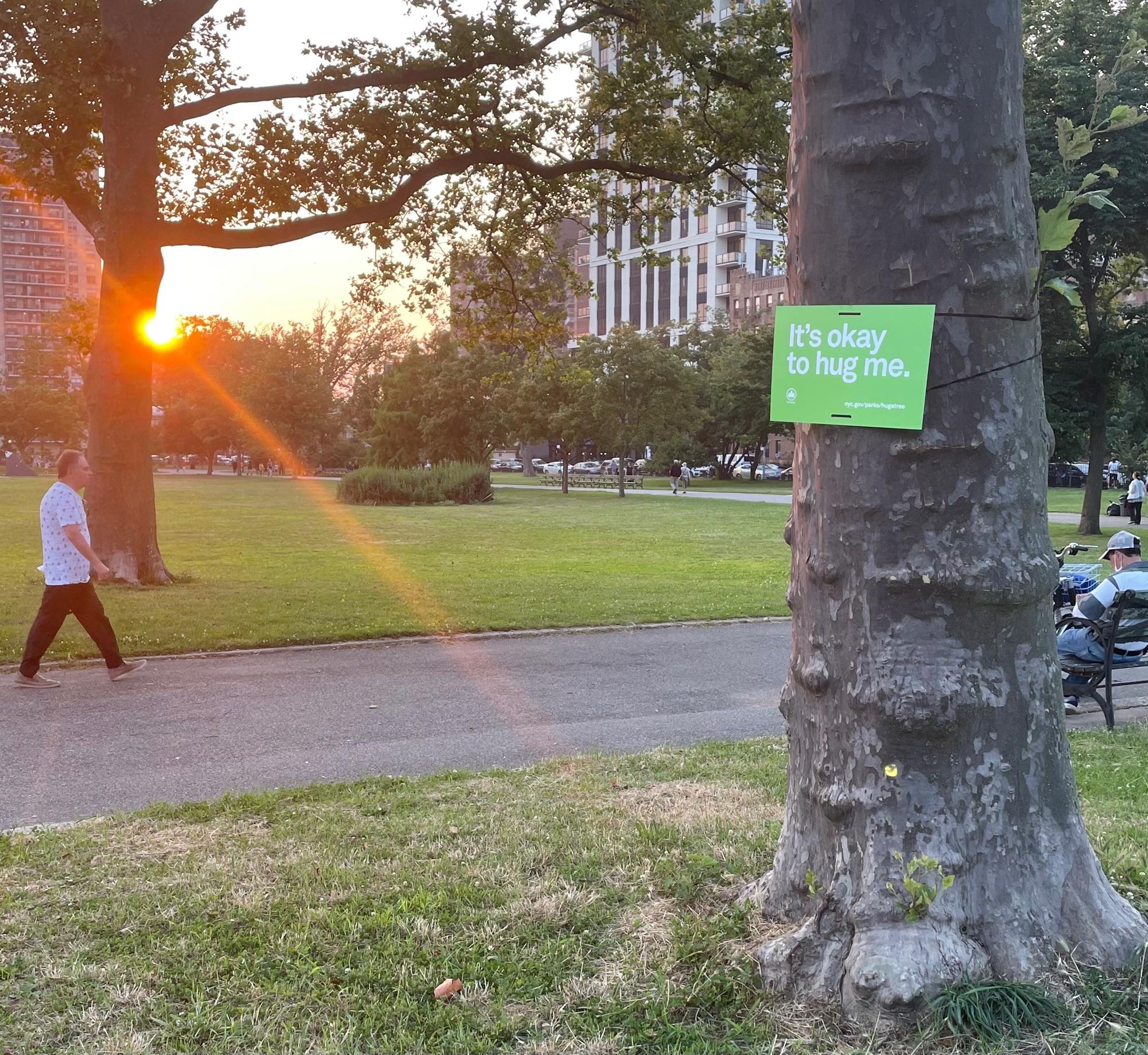 Закат в парке