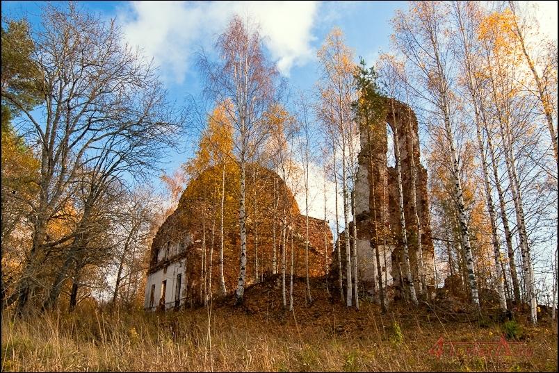 Зосимов монастырь на Ворбозомском озере, Церковь Благовещенская, Белозерский район Вологодской обл.