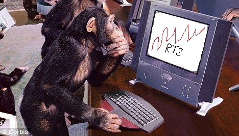 прикол обезьяна монитор