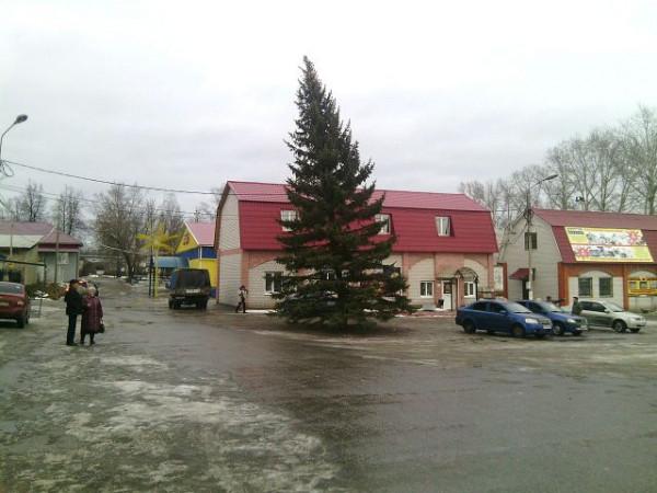 Селивановская елка, самая красивая и пьяная