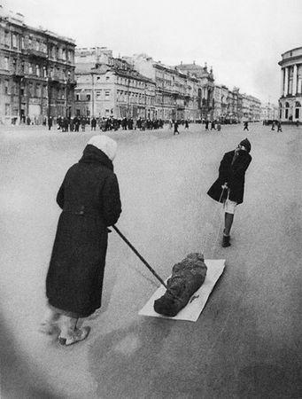 блокада Ленинграда тело на санях