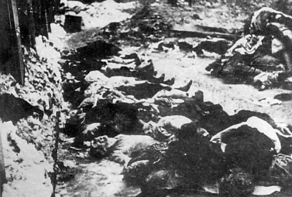 тела расстрелянных в Бутовском полигоне
