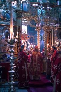 митрополиты Илларион и Онуфрий на Афоне 4
