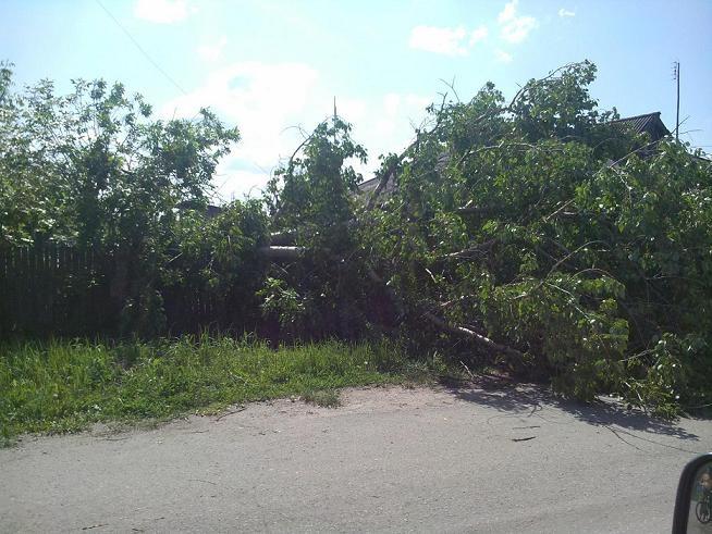 деревня после урагана 1