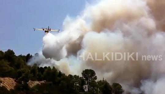 пожар на границе Афона 1