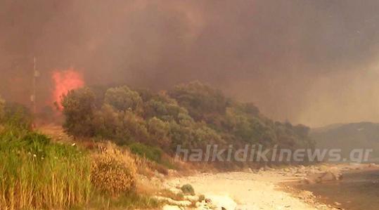 пожар на границе Афона 3
