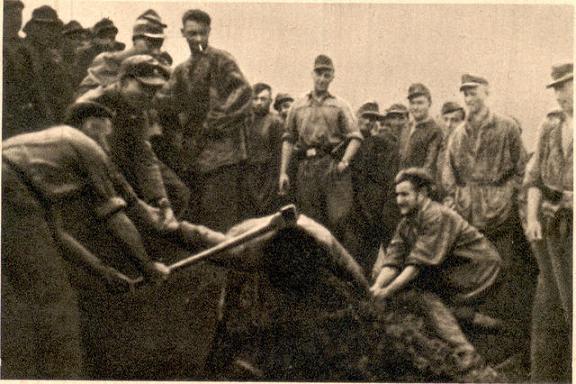 казнь серба устошами топором