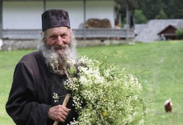 Старец Лука Филофейский