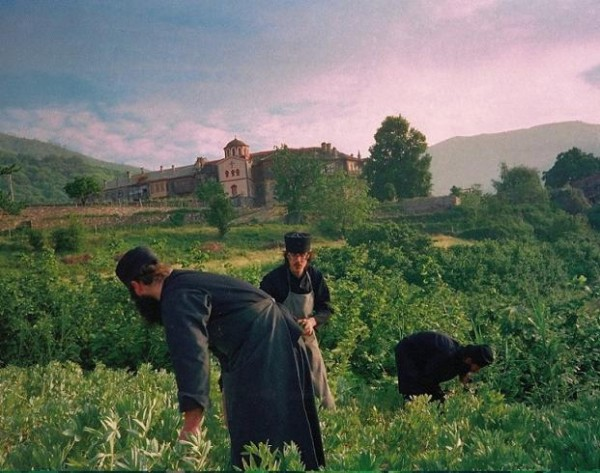 На монастырском огороде Филофея