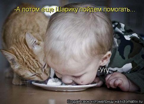 прикол ребено и кот