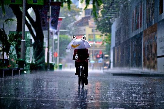 прикол зонтик