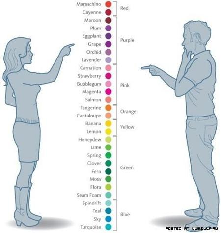 прикол цвета